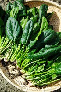vegetables-1125420_960_720